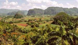 Провинция Пинар-дел-Рио
